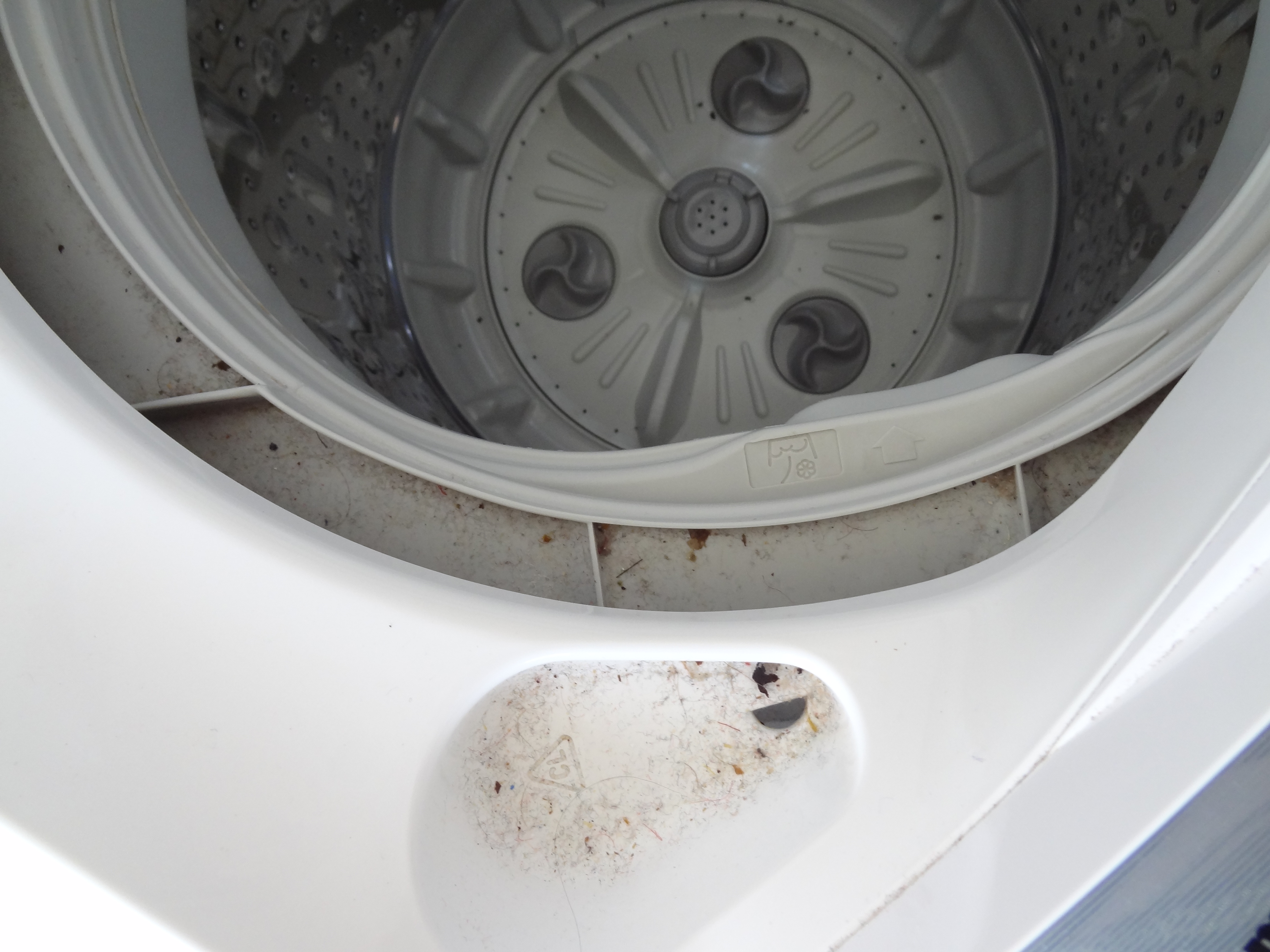 How to clean the washing machine properly