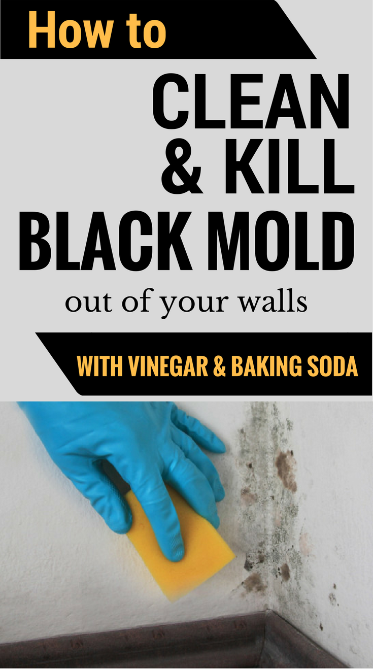 How to clean kill mold off your walls with vinegar and - Cleaning mold off bathroom walls ...