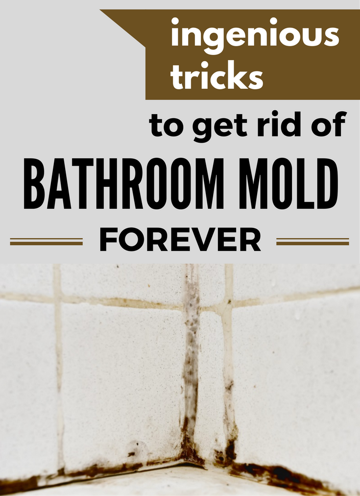 ingenious tricks to get rid of bathroom mold forever cleaninginstructorcom - How To Get Rid Of Bathroom Mold