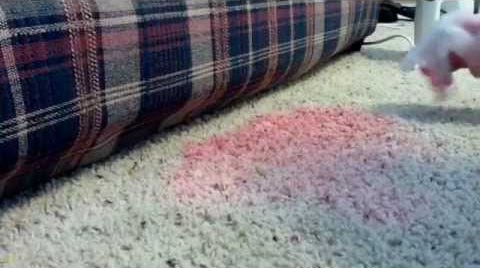 How To Get Kool-Aid Out Of Your Carpet