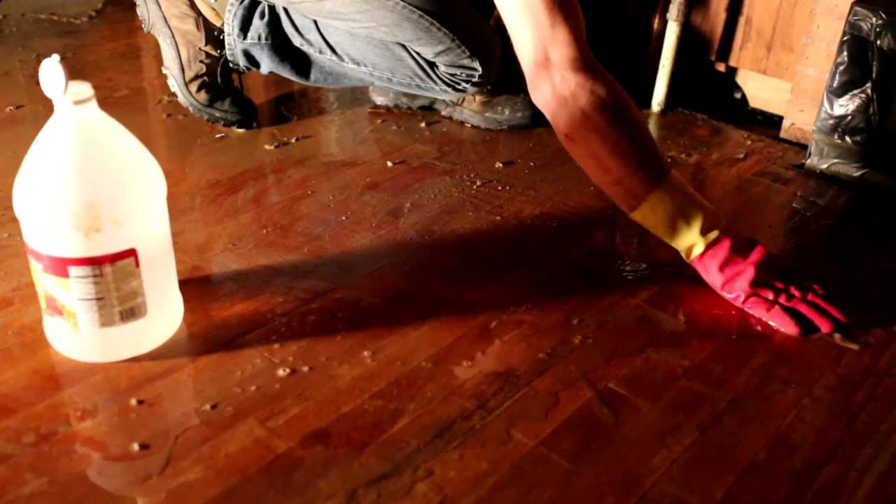 Step By Step Guide To Clean Hardwood Floors With White