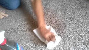 "DIY Carpet Freshener To Get Rid Of ""New Carpet"" Smell"
