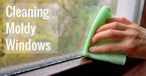 How I Managed To Kill Black Mildew On Wooden Windowsills